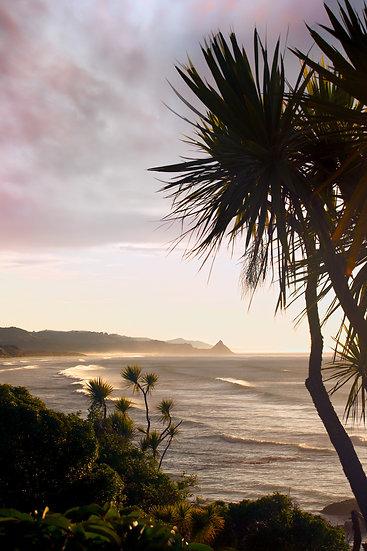 Cabbage trees Ocean View Dunedin New Zealand beach ©Starfish Photos | Michele Newman Photographer