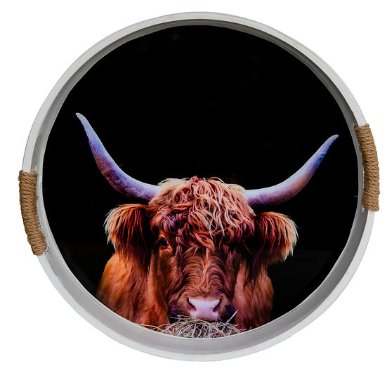 highland cow photo drinks serving tray resin ©starfish photos Michele Newman photographer