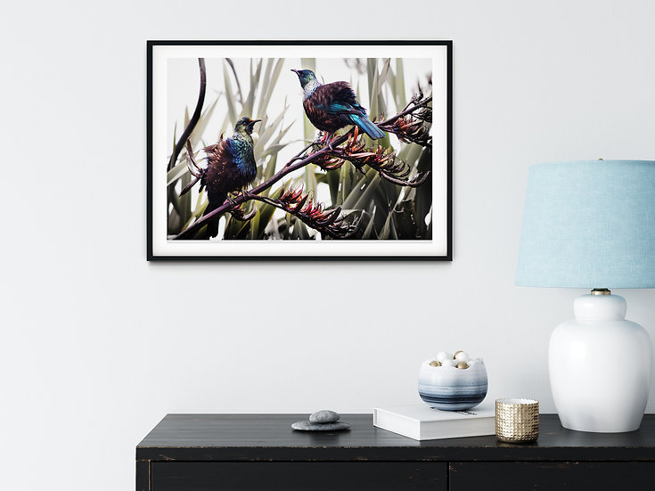 photo two tui New Zealand native birds ©starfish photos michele new photographer