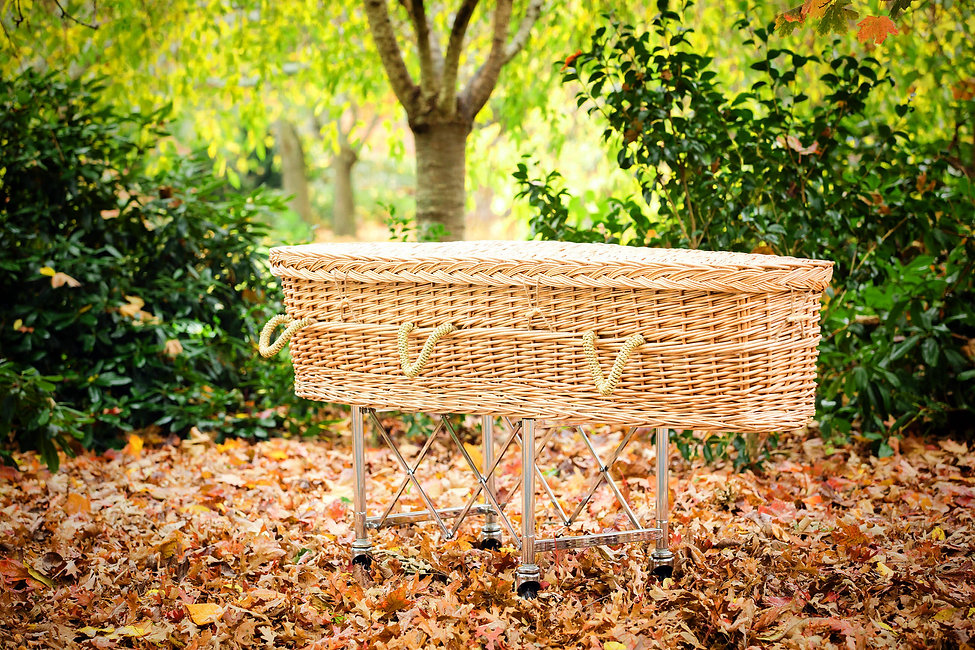 Wicker-coffin-in-leaves-web-banner-1.jpg