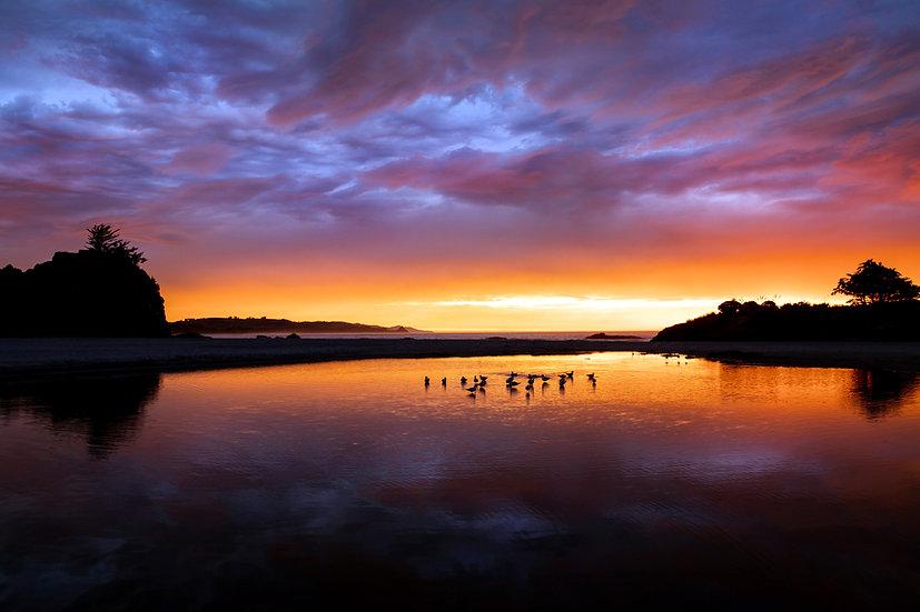 Sunrise Brighton Beach Dunedin New Zealand photography landscape ©starfishphotos Michele Newman photographer