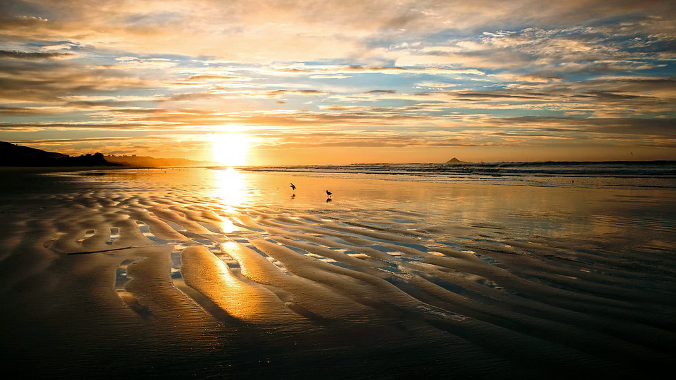 Ocean View beach sunrise - Dunedin - New Zealand ©Starfish Photos | Michele Newman Photographer