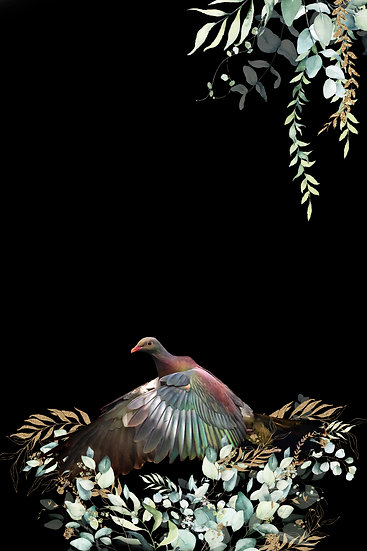 Photo of New Zealand Kereru Wood Pigeon flying ©Starfish Photos | Michele Newman