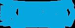 karas_logo_krzywe3 (1).png