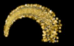 זהבי_Logo.png