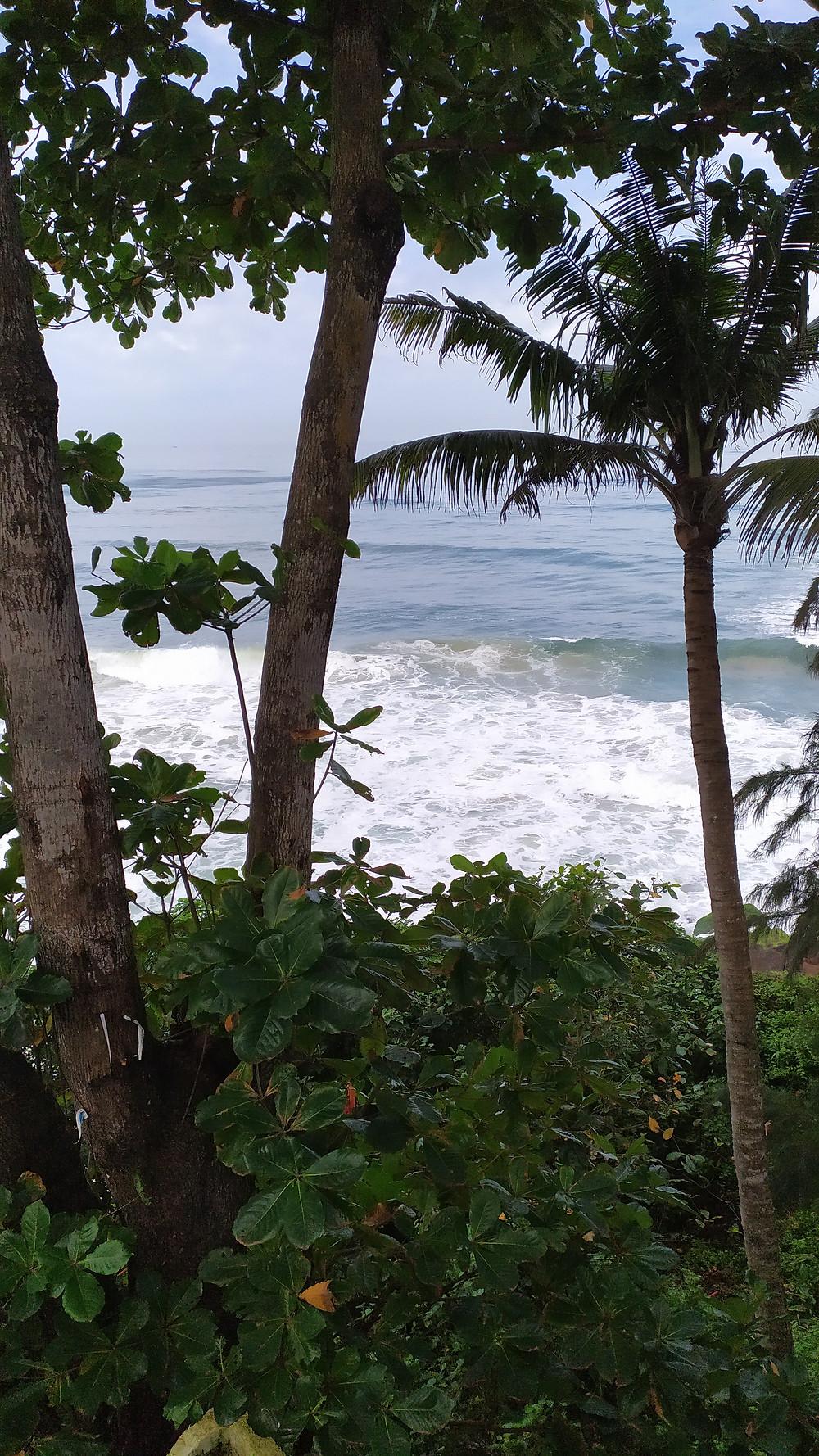 וורקלה (Varkala) הוואי של המזרח -בהודו , חוף על צוק , בדרום הודו