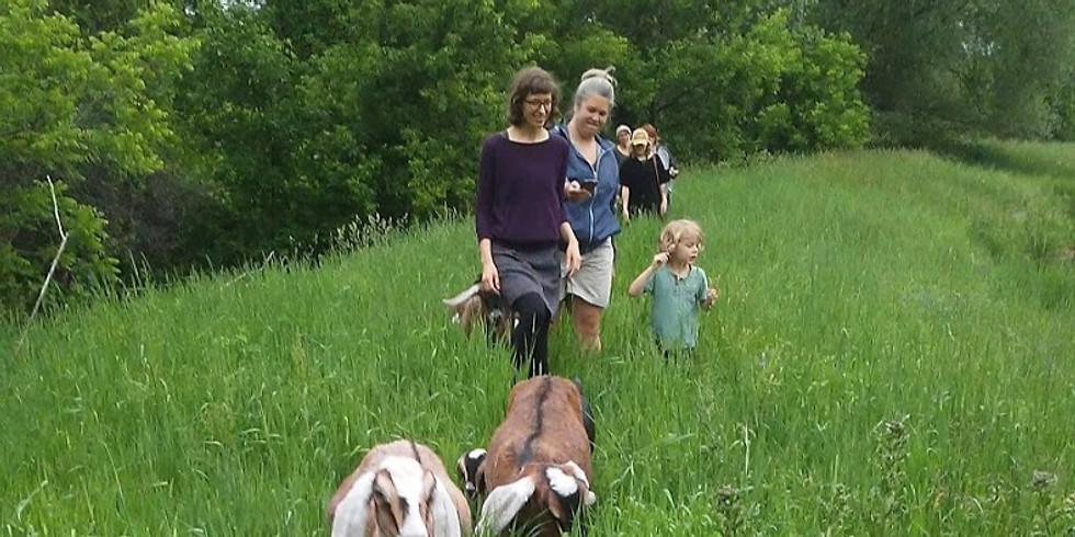 Sunday Goat Hikes | Sept. 22 | 5pm