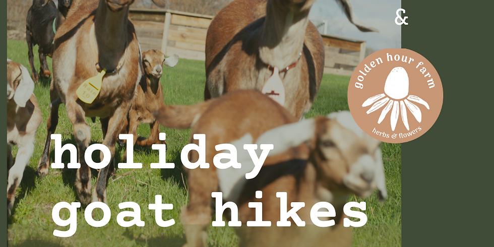 Holiday Hike with Golden Hour Tea | Sun, Jan 3 @ 10:30 AM