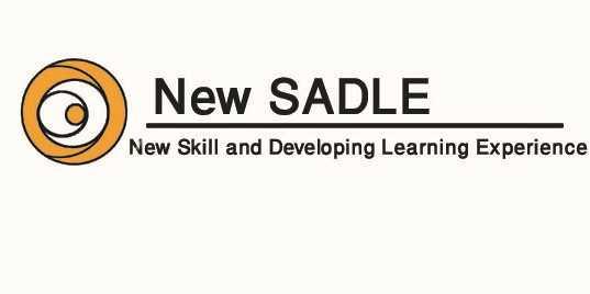 New Sadle