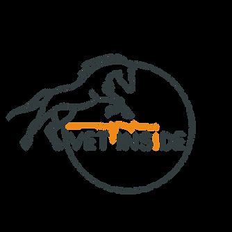 logo vet inside-sans fond.png