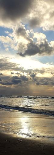 Freiheit am Meer... Zandvoort NL