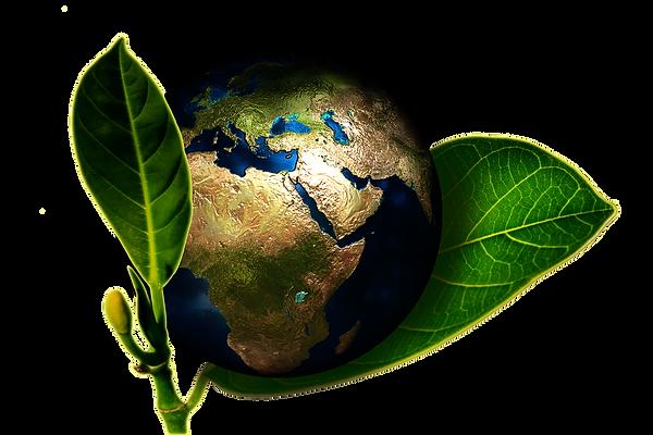 Copie de pixabay_earth-661447_1920_edite