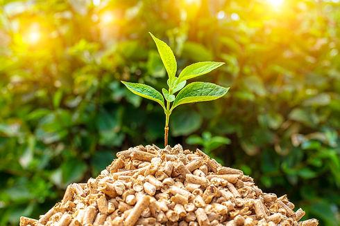 Services impartis d'énergie verte