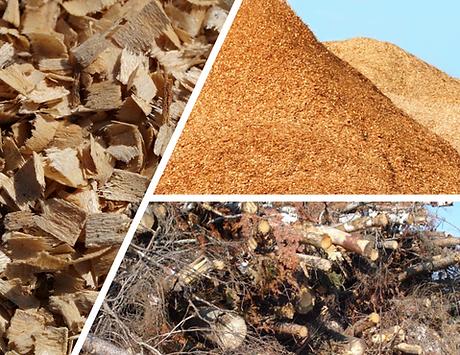 Centre de tri et stockage de la biomasse forestière