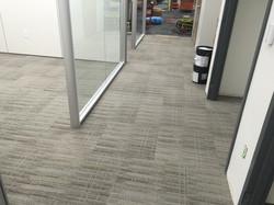 Office Carpet