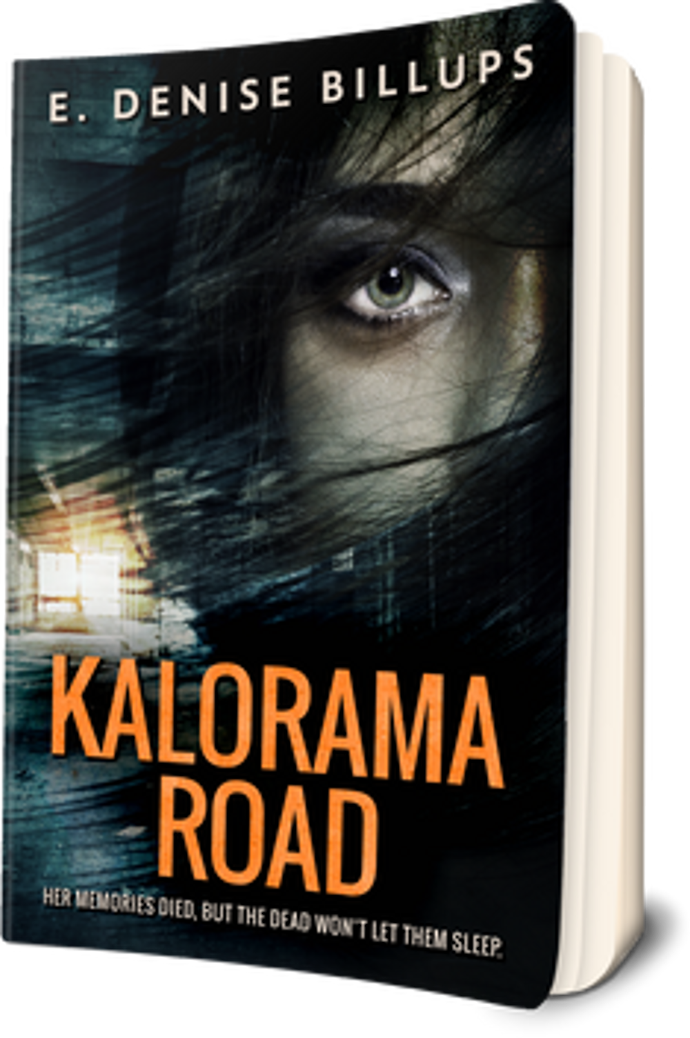 Creativia - Kalorama-Road-Promo-Paperback