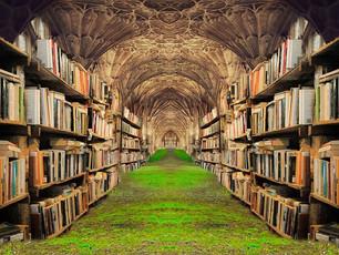 Plotter, Pantser, And Paranormal Historical Fiction