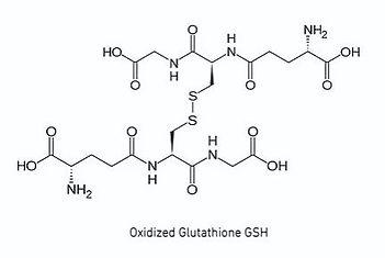 Oxidized Glutathione.JPG