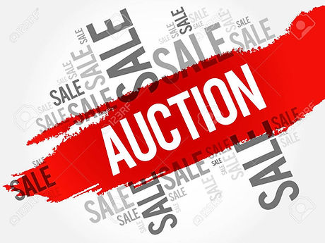 The Legal Auction