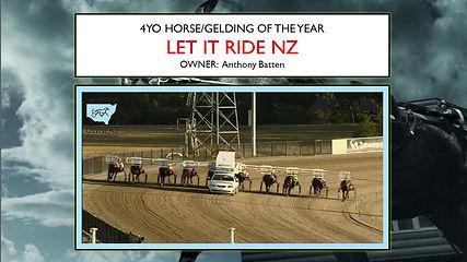 NSWSOA-AwardsNight-2017-2018-4YOColt.jpg