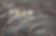 180727_銅鑼浴_banner800x533_新版+.png