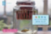 10180915_魚菜共生親子迷你DIY課程banner800x533-01.p