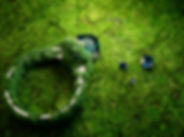 Ring_grass_B_03.jpg