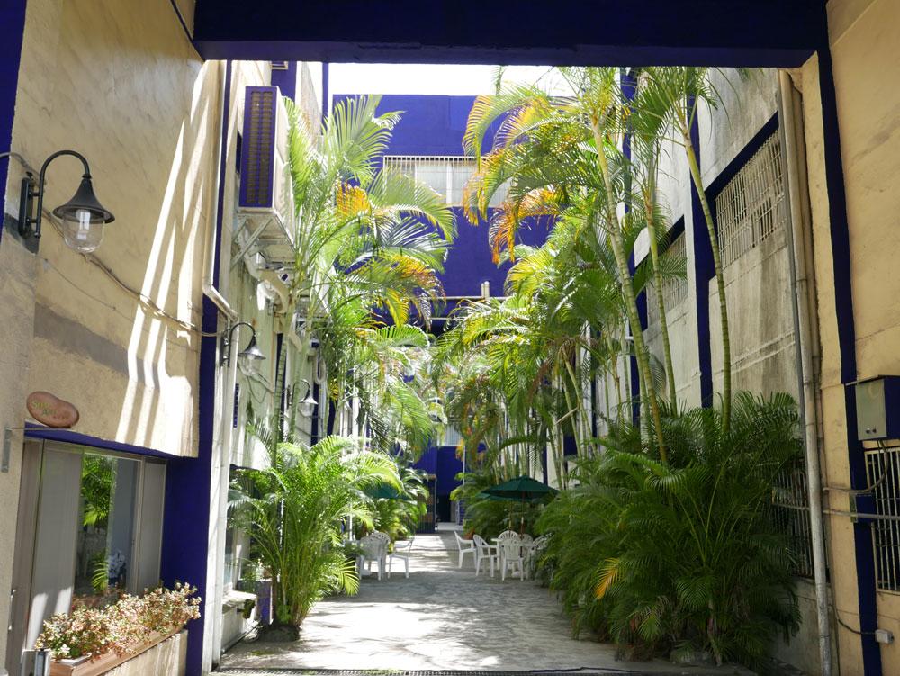 9-1-3_椰林綠廊18