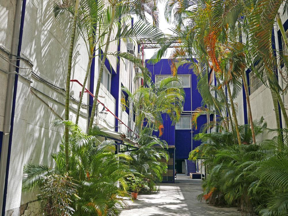 9-1-3_椰林綠廊16