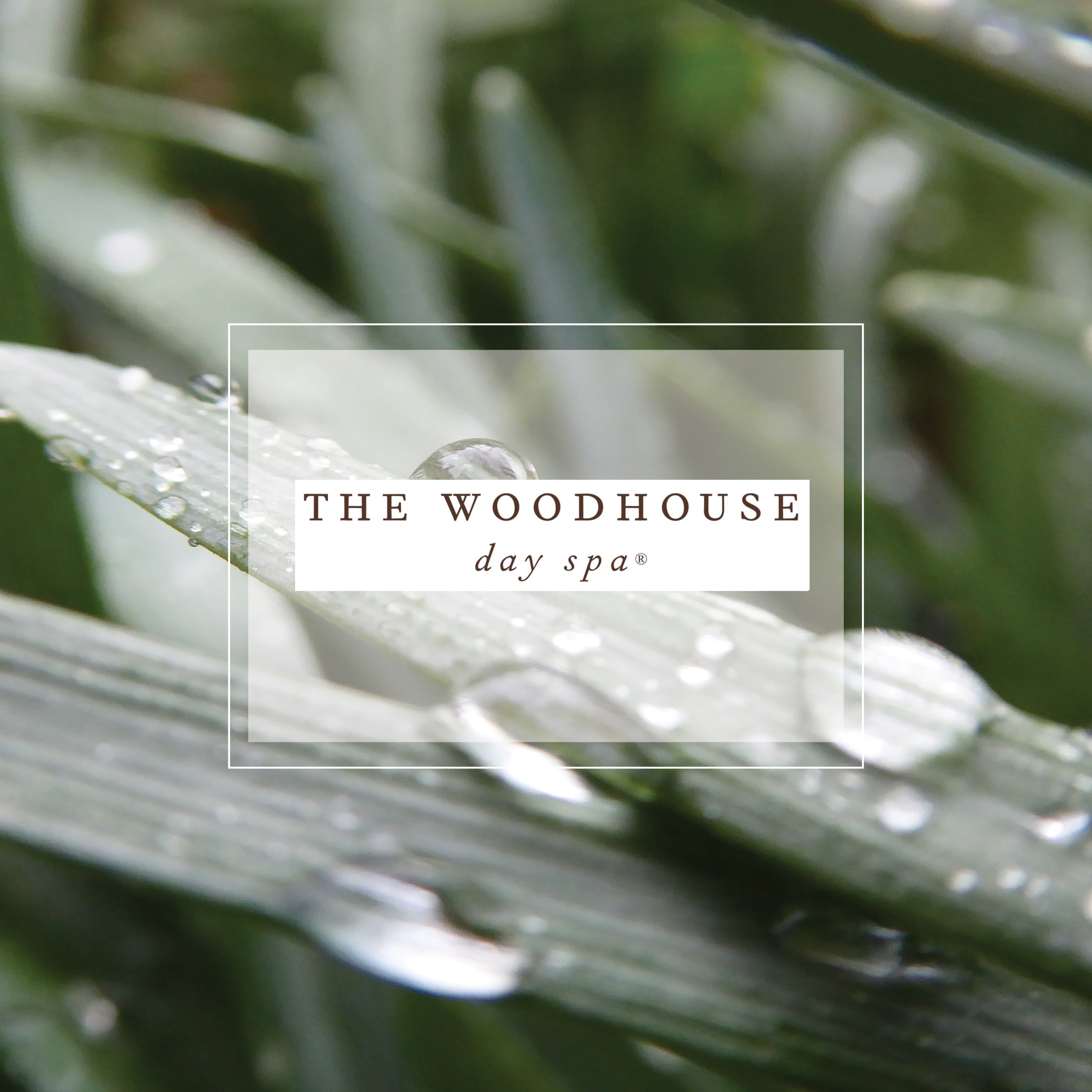 Wood House Day Spa Orlando Dellagio
