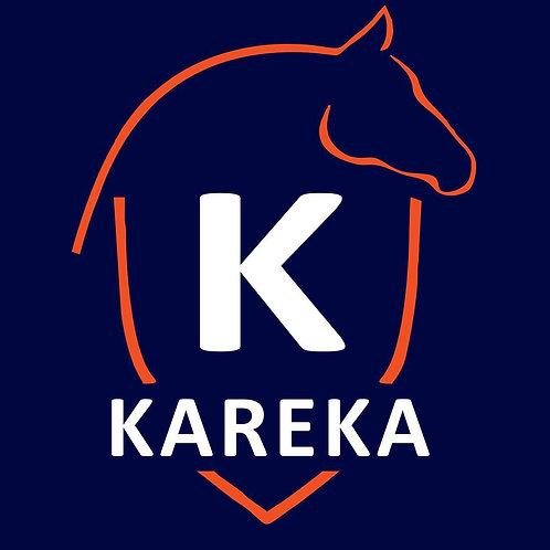 Team Kareka