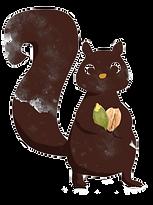 SQUIRREL GNAW CHOCOLATE BRAND UAE