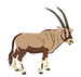 ORYX GNAW CHOCOLATE .png