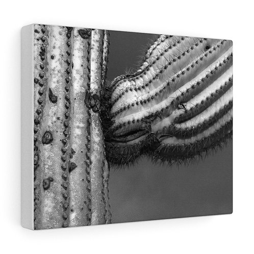 The Strong Arm - 10x8 Canvas
