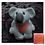 Thumbnail: DU03 - Papaya