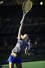 tennis-player-676303__480.jpg