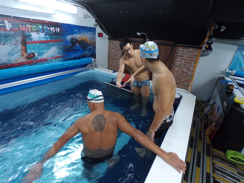 WTC 運動夥伴 成人游泳
