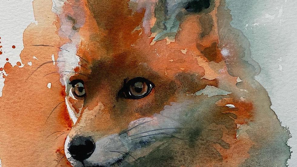 A Blur of Fur