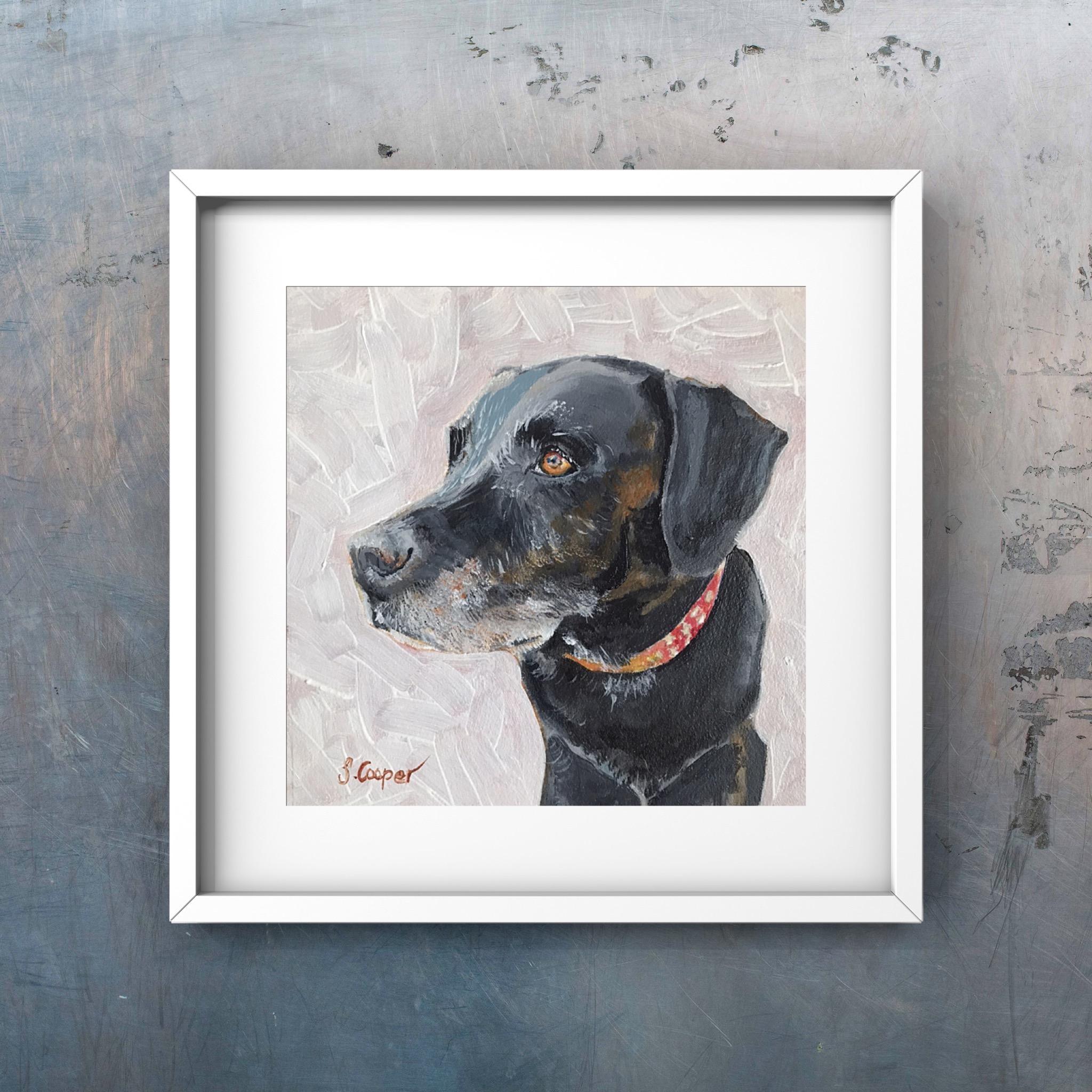 Charlie the Labrador