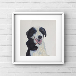 Ted the Collie - oils