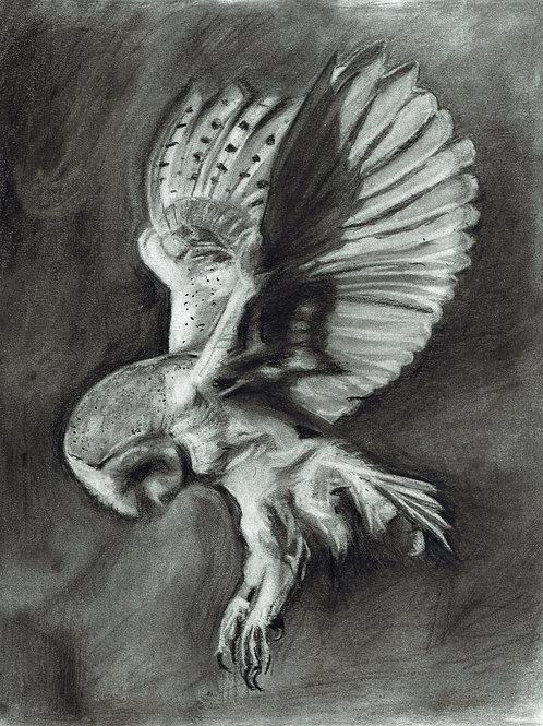 ORIGINAL - The Swoop