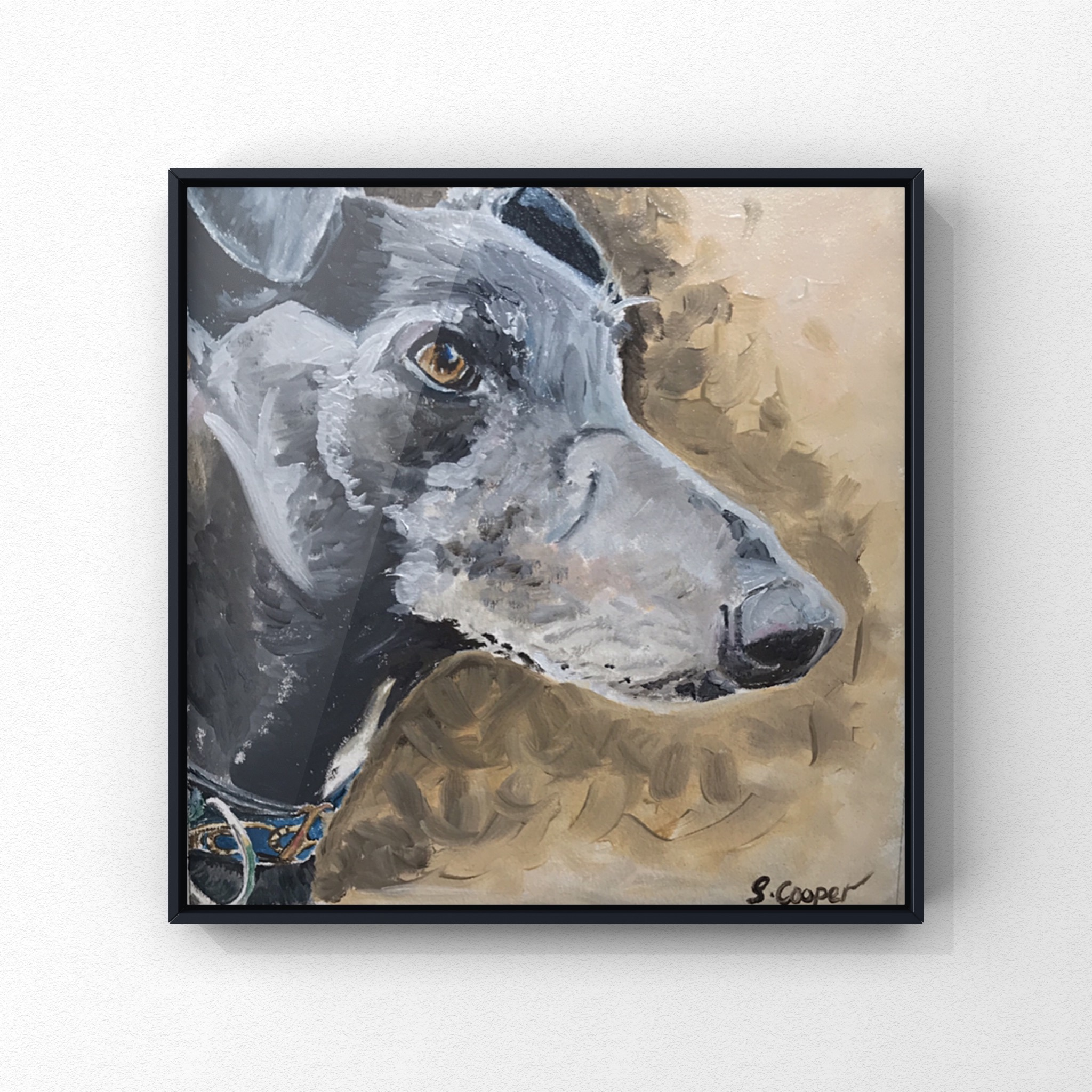 Dukie the Greyhound