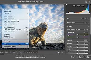 Adobe Announces Pixel Pump-Up Technology 'Super Resolution'
