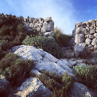 inmygarden_Hiking_6.JPG