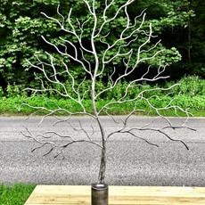 Chiltern Tree