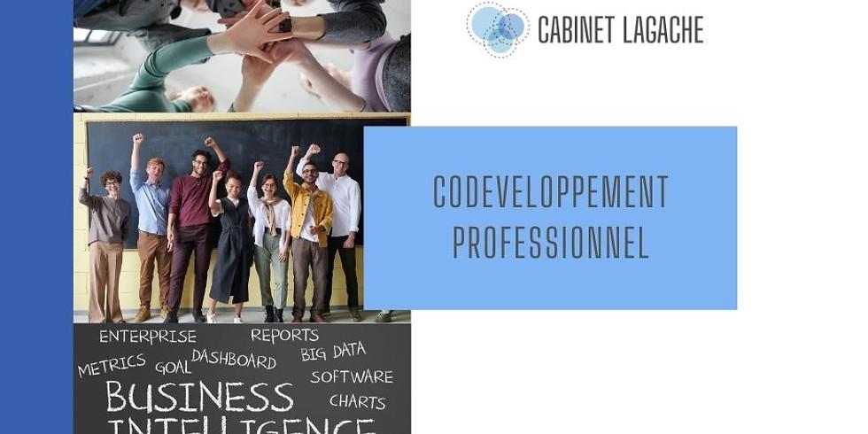 Initiation au CoDéveloppement et présentation du cycle - en visio 16/10