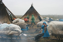 Nomads' Children of Yamal