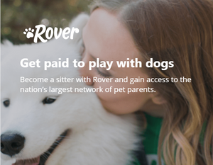 Get paid to play with dogs paying dog sitter made money dog sitting earn extra income playing with dogs