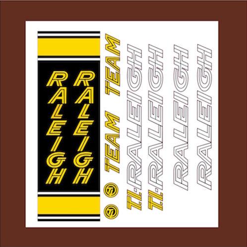 Kit pegatinas Raleight team