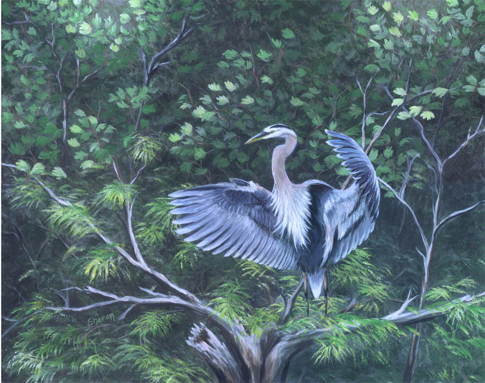 Great blue heron custom painting